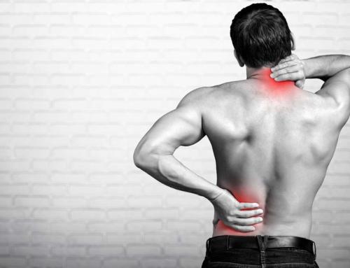 Mon dos : mieux le comprendre pour mieux prévenir