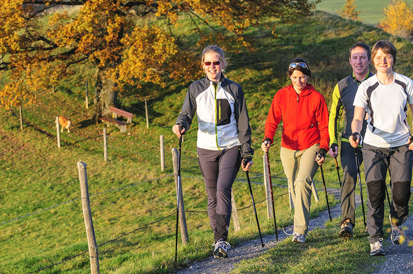 Photo d'un groupe de personnes marchant ensemble dans la montagne, la marche nordique permet d'améliorer son système cardio vasculaire